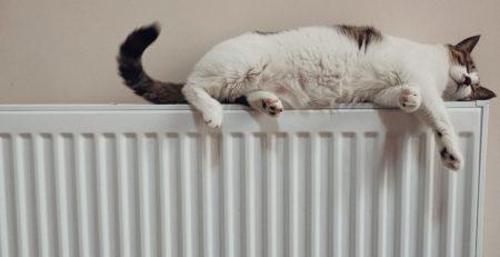 Caldera de gas uso eficiente de la calefaccion